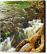 River Rapids Canvas Print by Elena Elisseeva