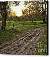 Road Less Traveled Canvas Print by Cris Hayes