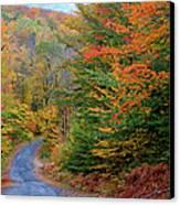Road Through Autumn Woods Canvas Print by Larry Landolfi and Photo Researchers
