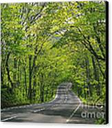 Road To Gatlinburg Tn Canvas Print by Elizabeth Coats