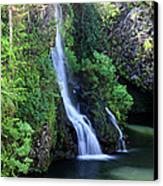 Road To Hana Waterfall Canvas Print by Pierre Leclerc Photography