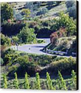 Road Winding Through Vineyard And Olive Trees Canvas Print by Jeremy Woodhouse