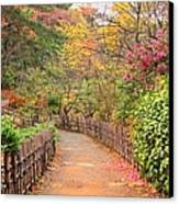 Road With Fence Canvas Print by ~~**Yuri's Photography**~~