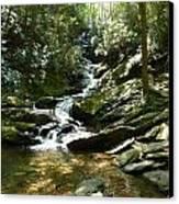 Roaring Creek Falls - II Canvas Print by Joel Deutsch