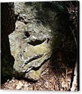 Rock Face Canvas Print by Joel Deutsch