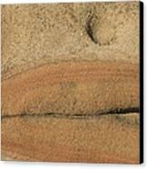 Rock Sculpture Canvas Print by Suzanne Lorenz