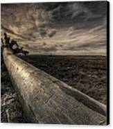 Roots Canvas Print by James Ingham