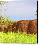 Round Bales Canvas Print