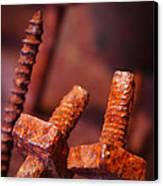 Rusty Screws Canvas Print