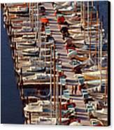 Sailboats At Moorage Canvas Print
