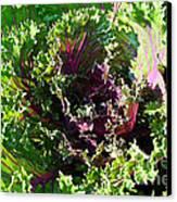 Salad Maker Canvas Print