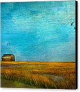 Salt Marsh Canvas Print by Michael Petrizzo