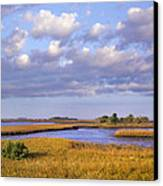 Saltwater Marshes At Cedar Key Florida Canvas Print by Tim Fitzharris
