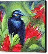 San Francisco Black Bird Canvas Print