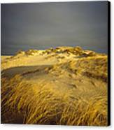 Sand Dunes And Beach Grass In Golden Canvas Print by James P. Blair