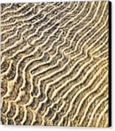 Sand Ripples In Shallow Water Canvas Print by Elena Elisseeva