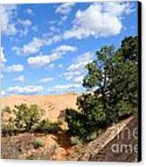 Sandstone Sky Canvas Print by Gary Whitton