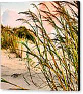 Sea Oats And Dunes Canvas Print by Kristin Elmquist