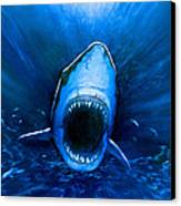 Shark Attack Canvas Print by Chris Butler