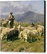 Shepherd Of The Pyrenees Canvas Print
