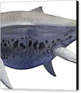 Shonisaurus, A Prehistoric Ichthyosaur Canvas Print by Sergey Krasovskiy