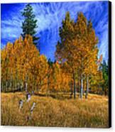Sierra Nevada Fall Colors Lake Tahoe Canvas Print by Scott McGuire