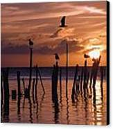 Silhouette Of Seagulls On Posts In Sea Canvas Print