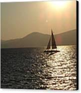 Single Sailboat Canvas Print