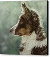 Skye Canvas Print by Lorraine McFarland
