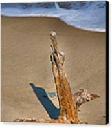 Snag And Surf II Canvas Print by Steven Ainsworth