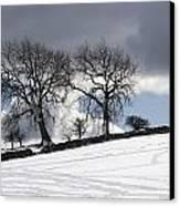 Snowy Field, Weardale, County Durham Canvas Print by John Short