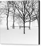 Snowy Trees And Park Benches Canvas Print by Meera Lee Sethi