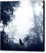 Solitary Canvas Print by Jarno Lahti
