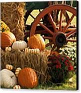 Southern Harvestime Display Canvas Print