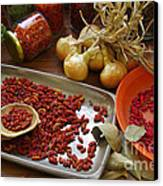 Spicy Still Life Canvas Print