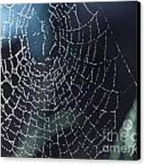 Spiderweb Blues Canvas Print by Artist and Photographer Laura Wrede