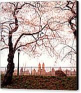 Spring Cherry Blossoms - Central Park Reservoir Canvas Print by Vivienne Gucwa