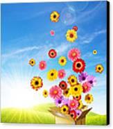 Spring Delivery 2 Canvas Print by Carlos Caetano