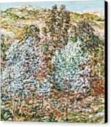 Springtime Vision Canvas Print