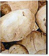 Spuds Canvas Print by Linda Pope