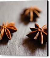 Star Anise On Slate Tray Canvas Print by Alexandre Fundone