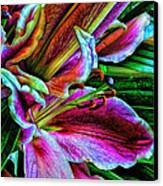 Stargazer Lilies Up Close And Personal Canvas Print