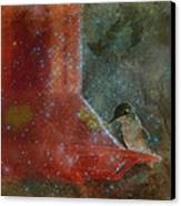 Stargazing Hummer Canvas Print by Cindy Wright