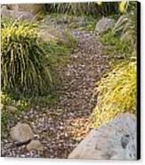 Stone Path Through Garden Canvas Print by James Forte