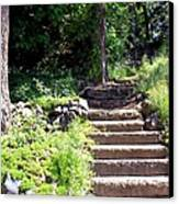 Stone Steps Canvas Print by Myrna Migala
