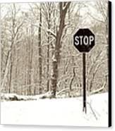 Stop Snowing Canvas Print by John Stephens