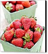 Strawberries Canvas Print by Elena Elisseeva