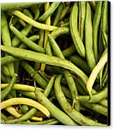 String Beans Canvas Print by Tanya Harrison
