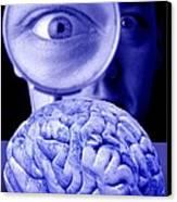 Studying The Brain, Conceptual Image Canvas Print
