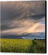 Summer Evening Storm Blowing Over Ripe Canvas Print by Dan Jurak